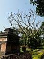 Dutch Cemetry at Chinsurah, Hooghly 10.jpg