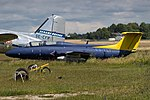 ES-YLT L-29 Delfin VBY.jpg