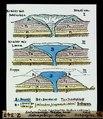 ETH-BIB-Entstehungs-Phasen einer Siebengebirgs-Kuppe nach H. Laspeyres-Dia 247-Z-00347.tif
