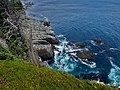 East Coast Trail (42225536440).jpg