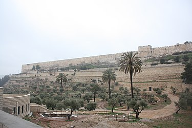 Eastern Temple Mount wall, Jerusalem from near Gethsemane.jpg