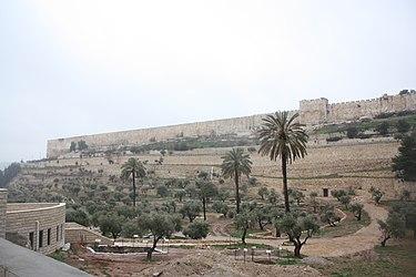 Eastern Temple Mount wall, Jerusalem from near Gethsemane.jpg