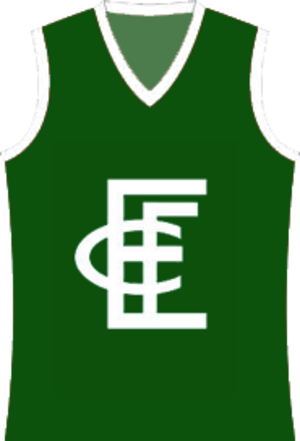 Echuca Football Club - Image: Echuca Football Club jumper