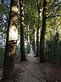 Ede, Netherlands - panoramio - Ben Bender (2).jpg