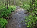 Elk Creek (near Durbin, West Virginia, USA) (26628937844).jpg