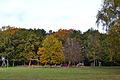 Elmshorn Spielplatz Liether Wald 02.jpg