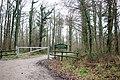 Entrance to Tugley Wood, Fisher Lane - geograph.org.uk - 335443.jpg