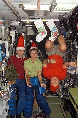 Expedition 16 crew members pose for a Christmas photo in the Zvezda Module of the ISS.jpg