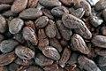 Fèves de cacao grillées de São Tomé-et-Príncipe (3).jpg