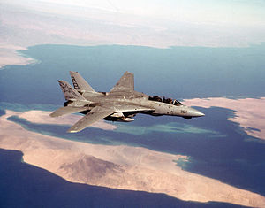 F-14A VF-33 Desert Storm CAP 1991.JPEG