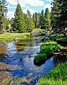 F. Old Firehole River, Yellowstone 9-11 (15005601917).jpg