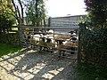 Farm stock near East Brow House - geograph.org.uk - 244734.jpg