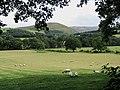 Farming at Bonnington - geograph.org.uk - 1449217.jpg