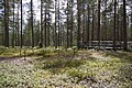 Fattenborg naturreservat 05.jpg