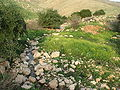 Fatzael Springs and water system 012.JPG