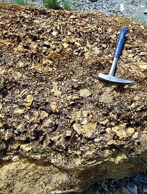 Ferricrete - This boulder of ferricrete near Questa, New Mexico, is an  iron oxide-cemented colluvial breccia.