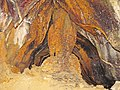 Ferruginous travertine speleothem (Ohio Caverns, western Ohio, USA) 1 (30981412652).jpg