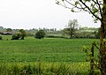 Fields west of the Worcester and Birmingham Canal - geograph.org.uk - 1353633.jpg