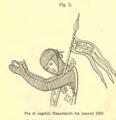 Fig 5 Aarbog for Nordisk Oldkyndighed og Historie 1867.png