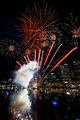 Fireworks (6878077591).jpg