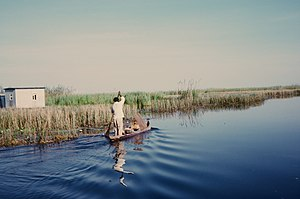 Kabwe - A resident fisherman enters Lukanga Swamp about 60 km west of Kabwe, Zambia. Fisher families live in papyrus shelters on floating mats of vegetation within the swamp.  The national bird, the fish eagle, may be seen hunting for its prey in the swamp.
