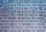A brick wall built using Flemish Bond