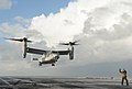 Flickr - Official U.S. Navy Imagery - A Sailor signals an Osprey to land on the flight deck..jpg