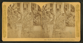Florida door yard, banana and Century plant, from Robert N. Dennis collection of stereoscopic views.png