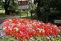 Flowerbed, Tullylish near Banbridge - geograph.org.uk - 500800.jpg