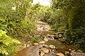Fluss in Garopaba 3 (21929283719).jpg