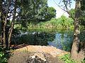 Flussufer - panoramio (1).jpg