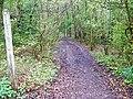 Footpath, Redford - geograph.org.uk - 1271782.jpg