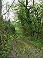 Footpath - Norwood Green Hill - geograph.org.uk - 1254631.jpg