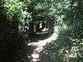 Footpath beside railway line - geograph.org.uk - 1381293.jpg
