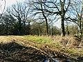 Footpath north of New Covert, near Compton Bassett - geograph.org.uk - 1172930.jpg
