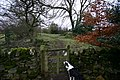 Footpath south from Boldron Church towards the A66 - geograph.org.uk - 1190266.jpg