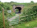 Footpath under the line - geograph.org.uk - 814774.jpg