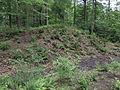 Fort Nonsense, Mathews County, Virginia (14506212393).jpg