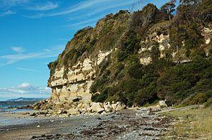Wynyard, Tasmania - View of Fossil Bluff sandstone cliffs