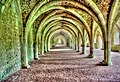 Fountains Abbey Arches.jpg
