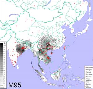 Haplogroup O-K18 - Image: Frequencies of Y DNA haplogroup O2 M95