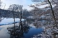 Fresh snow and a calm river - geograph.org.uk - 1650280.jpg