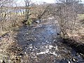 Fruin Water - geograph.org.uk - 140482.jpg