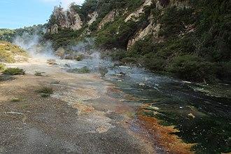 Waimangu Volcanic Rift Valley - Frying Pan Lake overflow stream
