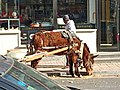 Funny Donkey-car in the city.jpg