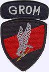 http://upload.wikimedia.org/wikipedia/commons/thumb/2/27/GROM-plakietka.jpg/100px-GROM-plakietka.jpg