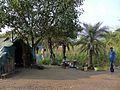 Ganeshpuri Akloli 2013 - panoramio (40).jpg