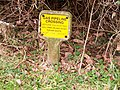 Gas pipeline warning sign, St Marys, Whitland - geograph.org.uk - 1188382.jpg