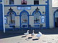 Geese at The Waterfront - geograph.org.uk - 1299712.jpg
