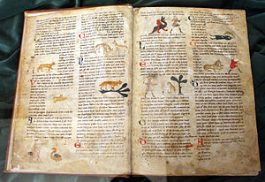 Richard de Fournival - Bestiaire d'amour, XIV sec. (Biblioteca Medicea Laurenziana)